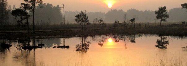Pudmore Pond