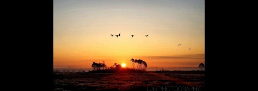 Sunrise at Moat Laura Norgate