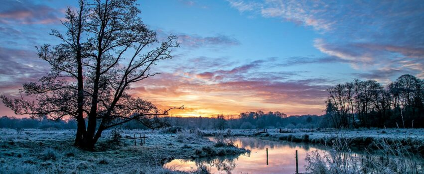 A frosty Thundry Meadows at sunrise.