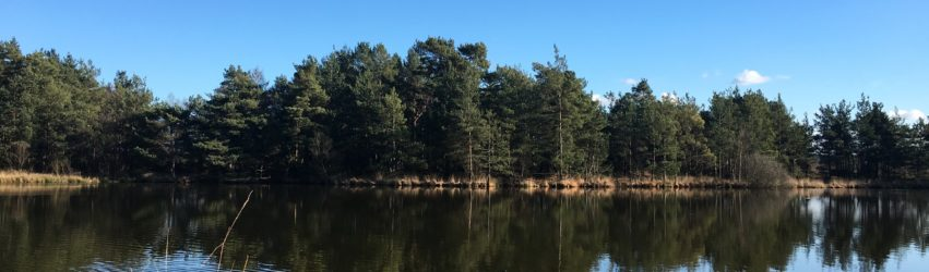 The Moat at Thursley NNR with the trees reflecting in the water.