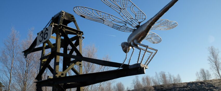 The dragonfly sculpture made from an old pylon at Thursley NNR.