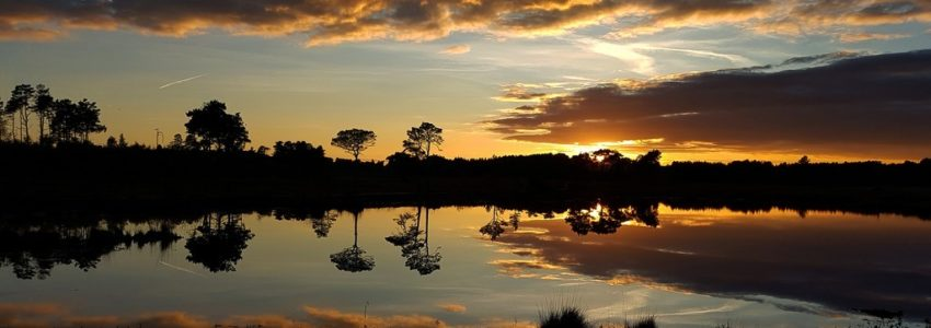 Sunset over pudmore pond, with clouds and trees reflected in the water.