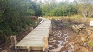 Read more about the article Work on the new boardwalk at Weyburn underway.
