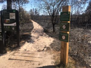 Preserve Our Reserve – End of Year Update (December 2020)