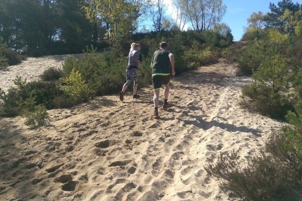A man and a woman running up one of the sandy slopes on Hankley Common. It's a sunny day and there is heather, trees and small pine trees..