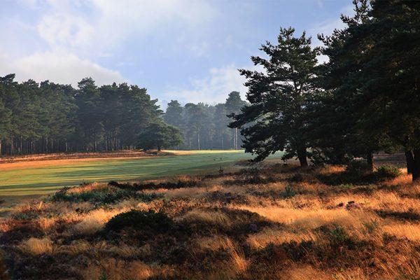 Hankley Golf Club